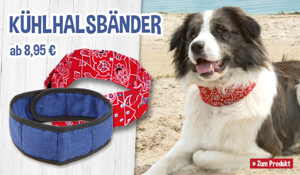 Hunde-Kühlhalsbänder