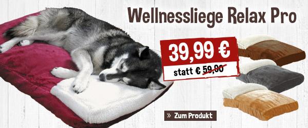 Wellnessliege Relax Pro