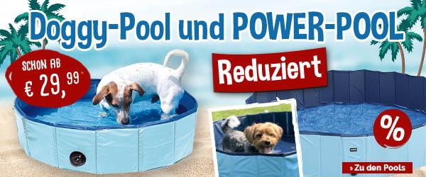 Doggy-Pool und Power-Pool