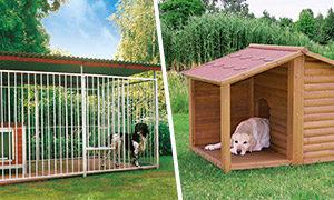 Hundezwinger VS Hundehütte
