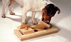 Interaktives Hundespielzeug