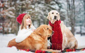 Hund im Winter warm halten