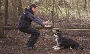 Fitnesstraining-fuer-hund-und-halter-kniebeugen
