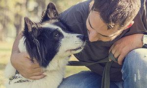 ich-bin-froh-hundebesitzer-zu-sein