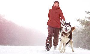 Winterurlaub-mit-Hund