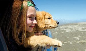Beliebte Urlaubsziele mit Hund