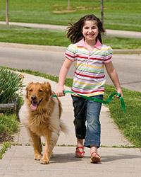 Begleithundetraining Kind mit Hund