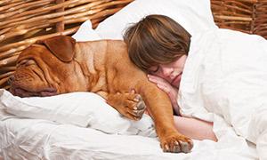 Hund und Kind im Bett