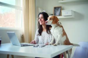 Bürohunde - Der Vierbeiner am Arbeitsplatz